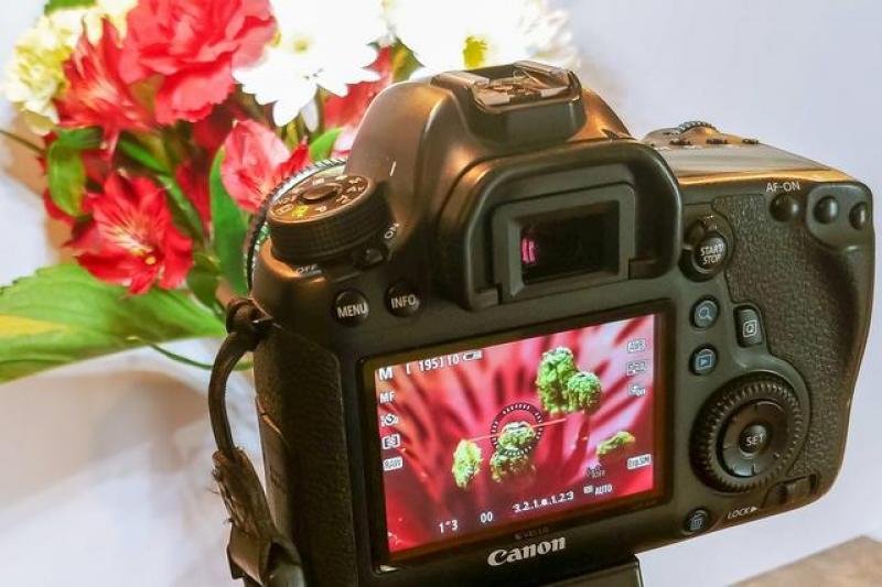 【暮烟疏雨之际】将50mm定焦镜头反装在相机上,接下来见证奇迹的时刻到了!