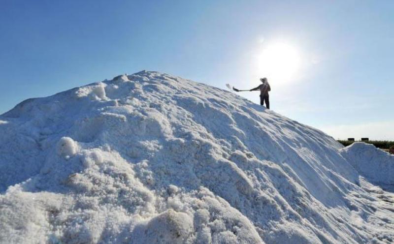为什么我们需要盐,但盐吃多了又有害健康?