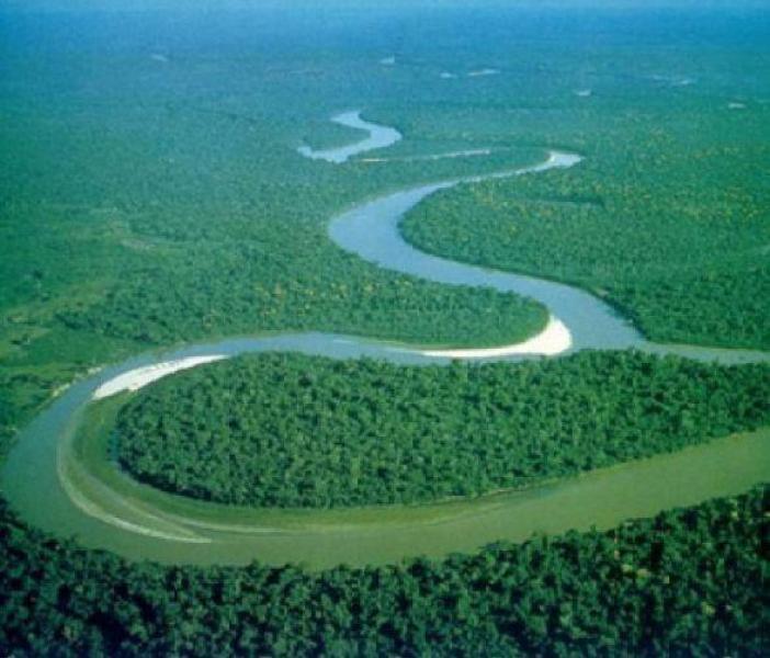 【白衣折扇翩翩少年】亚马逊雨林大面积燃烧,二氧化碳含量激增,或引发全球气候大变化