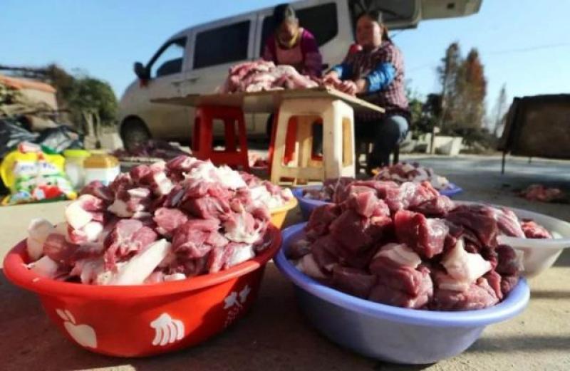 【少年维特斯】缺猪,允许养猪使用一般耕地!下半年猪价会跌吗?看完明白了!