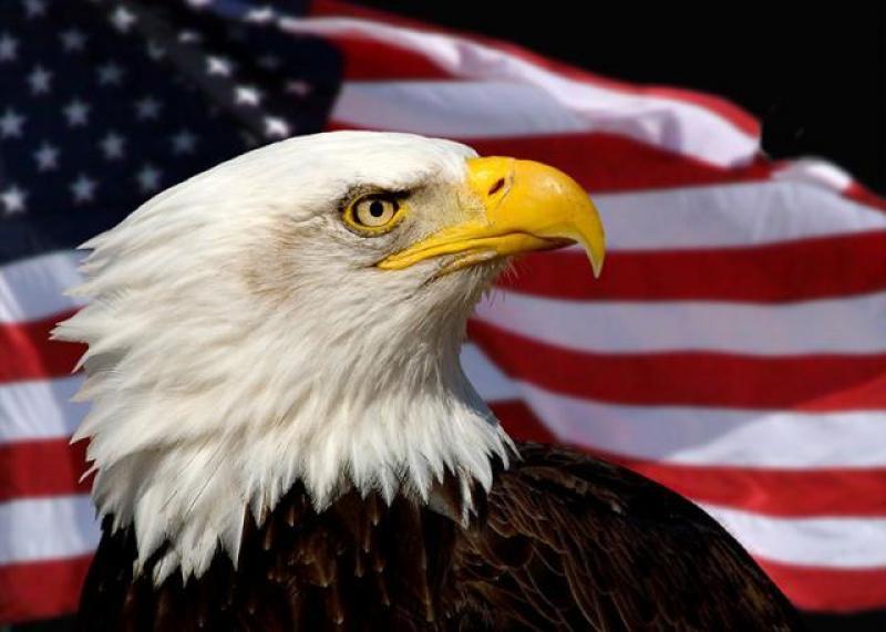 1033个美国农场破产,377个美国石油商破产后,外媒:唯一办法