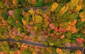 上帝视角看各国最美秋天 邂逅一场色彩的盛宴