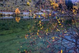 【千里故人稀】毕棚沟,世界自然遗产,国家级生态旅游示范区,知名红叶观赏圣地