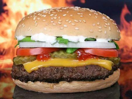 为什么汉堡有荤有素被称为垃圾食品,而三明治却是健康快餐