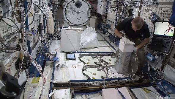 欧空局正尝试在国际空间站培育人造血管