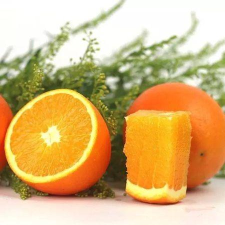 脐橙大丰收,纽荷尔……你确定分得清我是什么样的橙子吗?