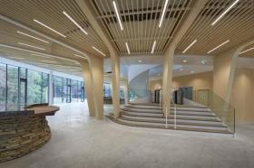 【是疯了的圆规】荷兰这个由木材和 165312 个螺丝组装的建筑,可 100%