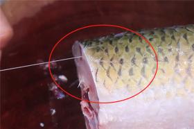 【少女菋の大青柚】鱼块不用烤也焦香四溢,教你简单家常做法,一腌一煎好吃下饭