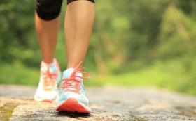 【一倾风月一流年】马拉松高手秘籍:消耗卡路里的跑步和力量训练