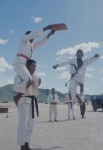 【浪货界扛把子】越战时期,韩国向越南派出的猛虎师团军事训练行动