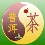 普洱茶圈服务分享社区圈子