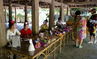 【一袭红衣】春节去哪里?西双版纳多彩的民族文化,丰富的热带资源