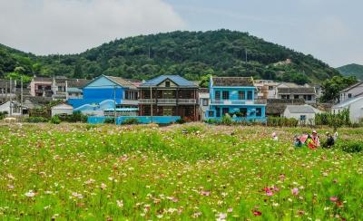 【拧巴小姐姐】浙江岱山的秀山爱琴海度假村花海