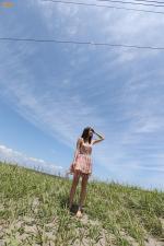 【树上的向日葵】蓝天碧云,还有少女的心
