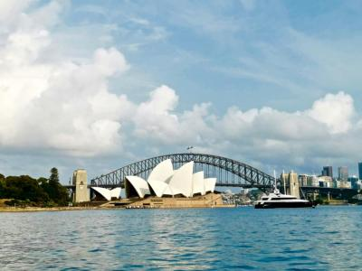【幽兰馨语】最美风景都看到!我为啥喜欢去悉尼皇家植物园