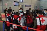 【娇慵猫娘】中国专家组启程赴意大利 一行9人从上海飞赴罗马