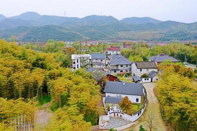 厉害了!曾经的穷山村,现被誉为浙北民宿第一村!